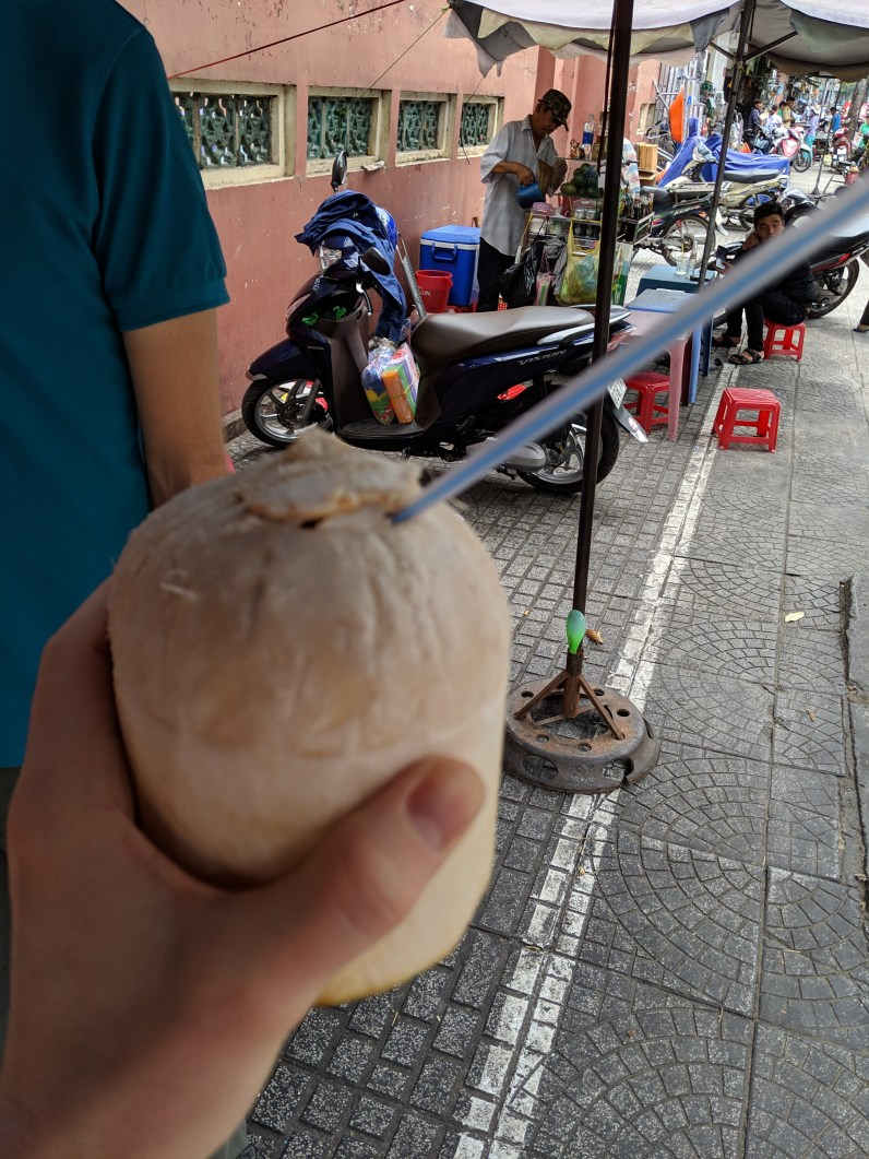 This grew on a coconut tree