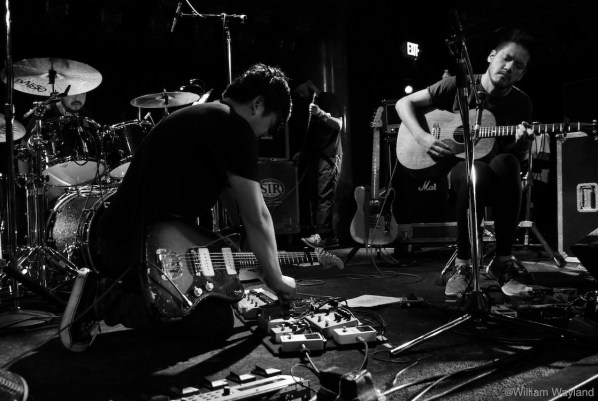 toe at Great American Music Hall by William Wayland 12