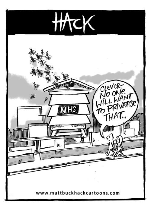 NHS, Cartoon, privatisation, Matt Buck hack Cartoons, Hampshire Chronicle