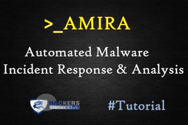 AMIRA Malware Analysis