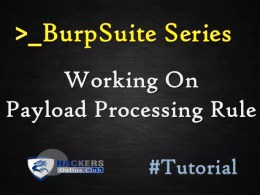 Burpsuite Payload Processing Rule