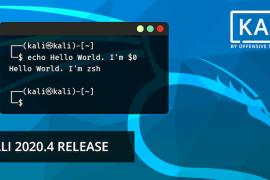 Kali Linux 2020.4