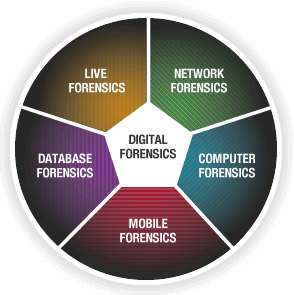 Digital Forensics Researcher