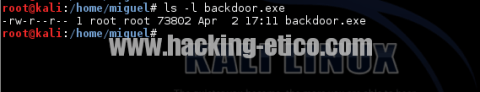 Backdoor creado con Metasploit