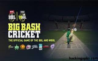 Big Bash Cricket Apk