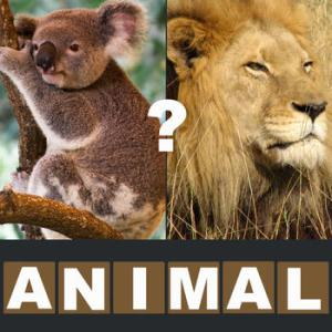 ANIMAL QUIZ – GUESS THE MOST FAMOUS ANIMALS (FARM, JUNGLE, SAVANNAH, DOMESTIC, FOREST) NEW FUN PUZZLE! HACK AND CHEATS