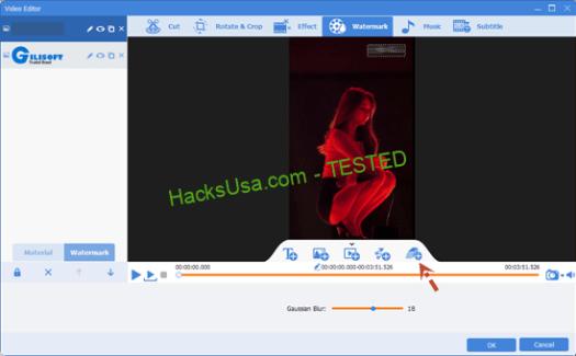 GiliSoft Video Watermark Tool Crack Free v2020.02