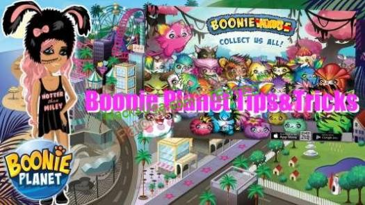 Boonie Planet Patch and Cheats money