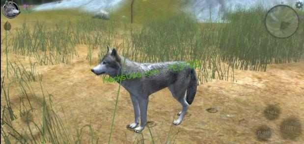 Ultimate Wolf Simulator 2 Mod (unlimited energy) APK