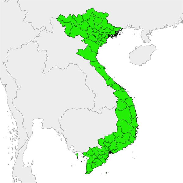 Vietnam-Liste-Entreprises-V.I.E