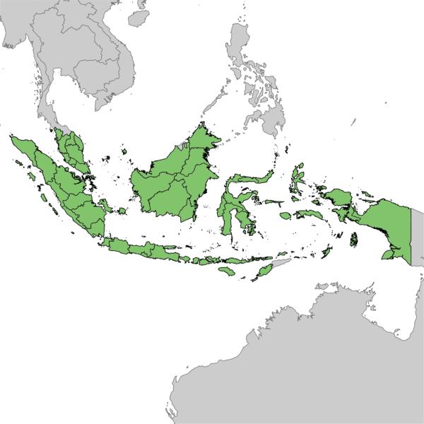 Hacktonvie-Malaisie-Indonésie