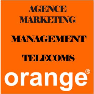 V.I.E_Secteur_Agence_Marketing_Management_Telecoms