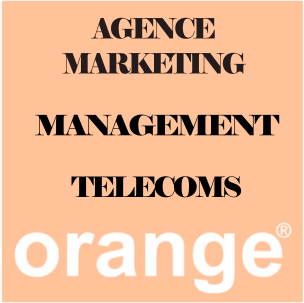 V.I.E_Secteur_Agence_Marketing_Management_Telecoms