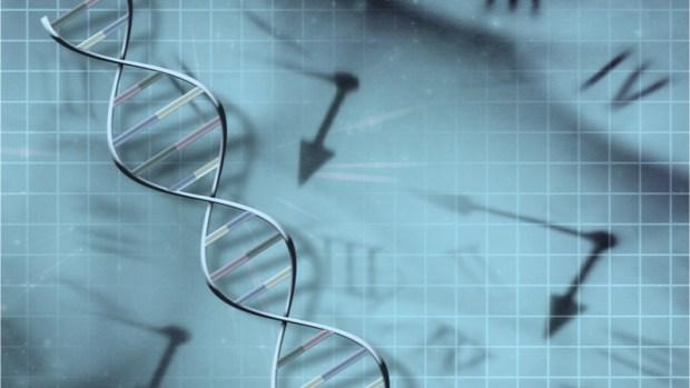 Epigenetic clock