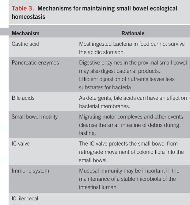 Small intestinal bacterial overgrowth: Homeostasis in the small intestine