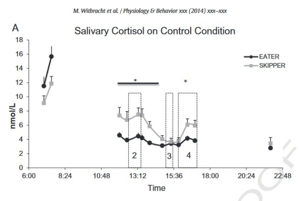 meal timing and cortisol levels