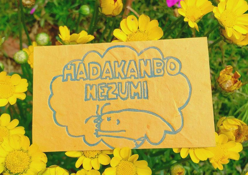 黄色いお花と看板
