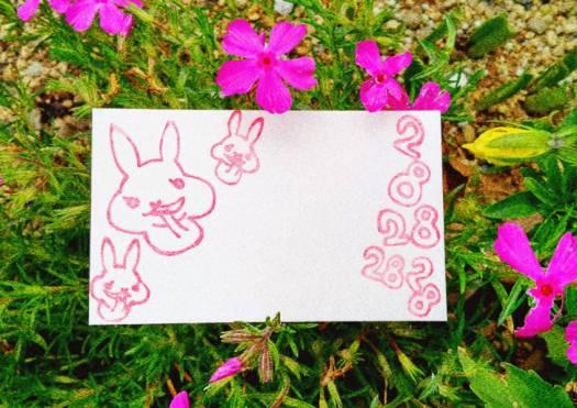2828usagi pinkflower