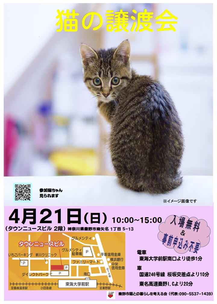 0421譲渡会ポスター