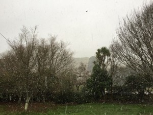snowing 2015