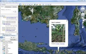 Google Earth myBabyTree