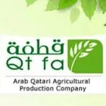 QTFA / Arab Qatari Showroom