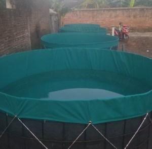 kolam terpal diameter 2