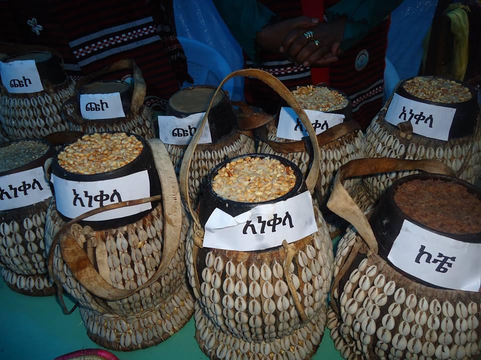 State of Hadiyya (Hadiyyisa) Language of Ethiopia - Themes on the