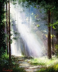 forest-light-gleb-goloubetski