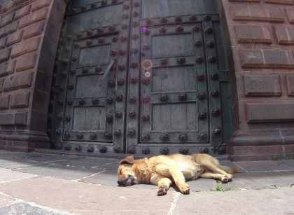 Napping on the cool stones in front of the Cathedral