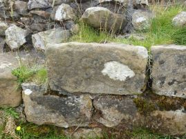 ...entdeckten wir sogar eine Bauinschrift des Truppenteils, der diesen Abschnitt der Mauer errichtet hat