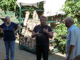 Erich Stekovics führt uns auf seinem Hof in die Kunst des Tomatenanbaus ein