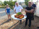 Tomaten aus den Gewächshäusern