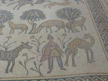 Hier sind der Dromedar-Führer und sein Tier noch ganz