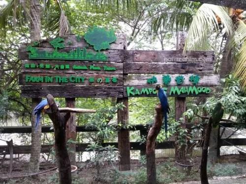 Kampung Mahmood Bird Zone Farm In The City