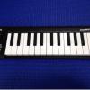 iPad用に「KORG microKEY-25(マイクロキー25鍵)」を購入しました