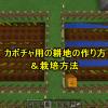【初心者が今さらマイクラPEに挑戦してみた】カボチャ用の耕地の作り方&栽培方法