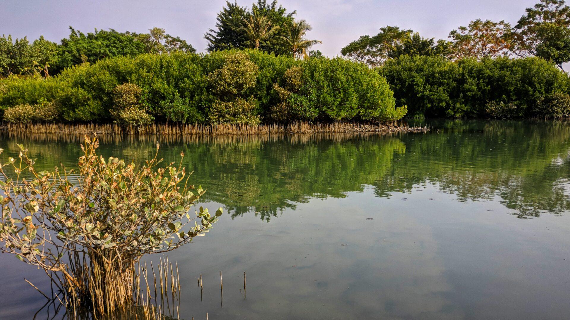 Jhongdou Wetlands Park