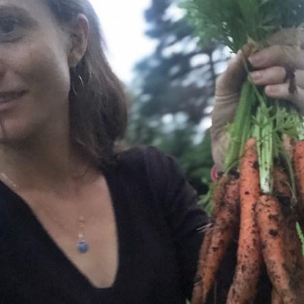 dyrk selv gulrøtter