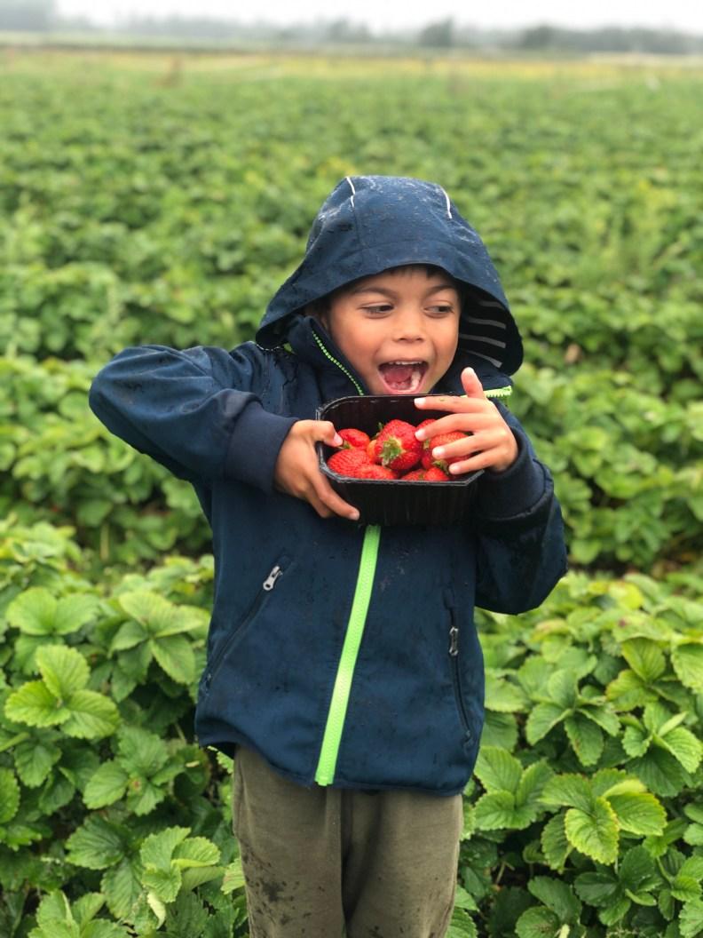 Barn med jordbærkurv.