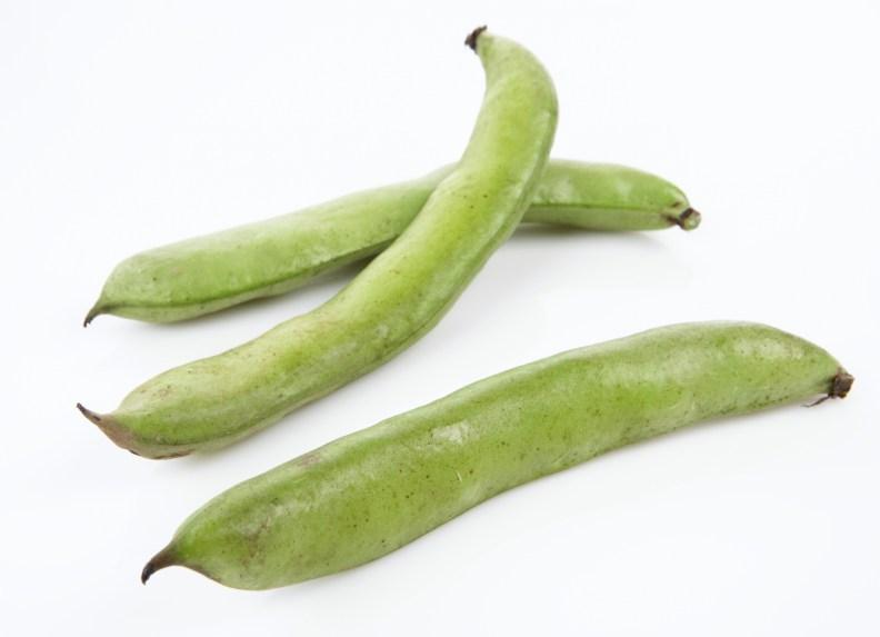 Tre grønne bondebønner dyrk selv