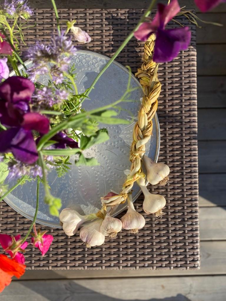 Flette av hvitløk fra kjøkkenhagen