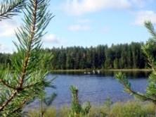 Sindorskoye lake-2