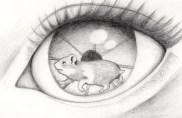 hamster eye