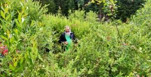Der Biologe und gute Wald- und Moorgeist Karel Kleijn