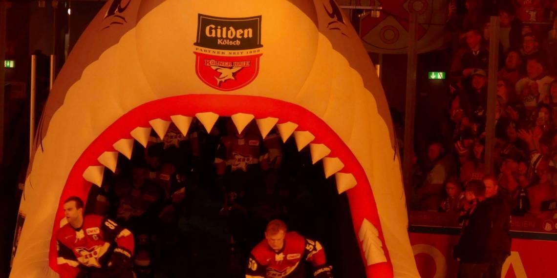 Die Zuschauer und das Haie-Maul