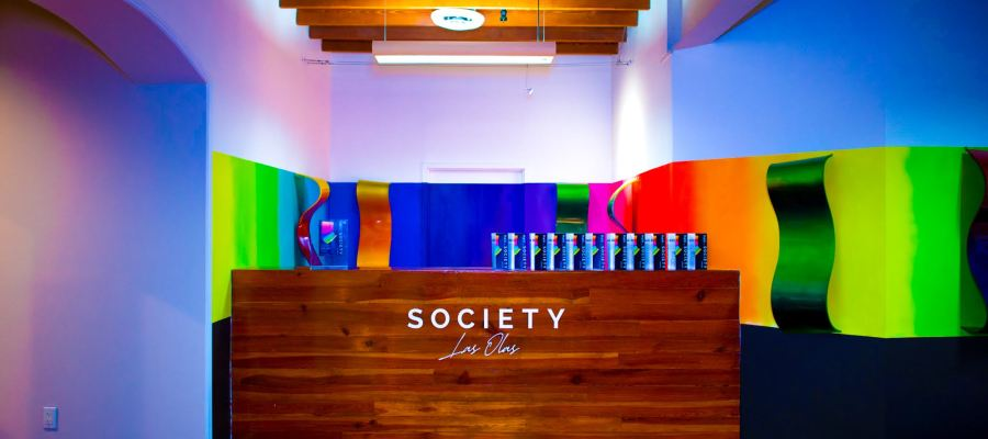 Haiii on Society Karli Evans Selects