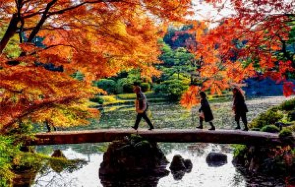 Rikugien Tokyo Jepang