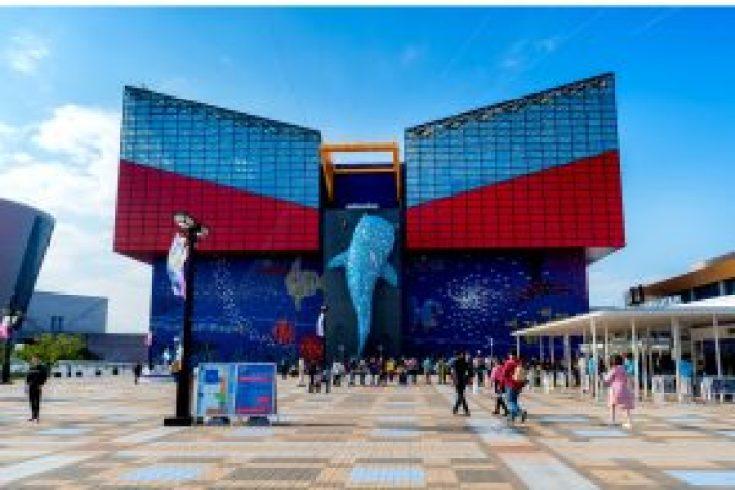 Aquarium di Osaka