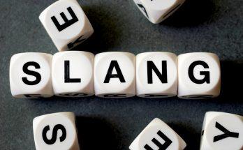 Bahasa slang atau biasa disebut dengan bahasa gaul